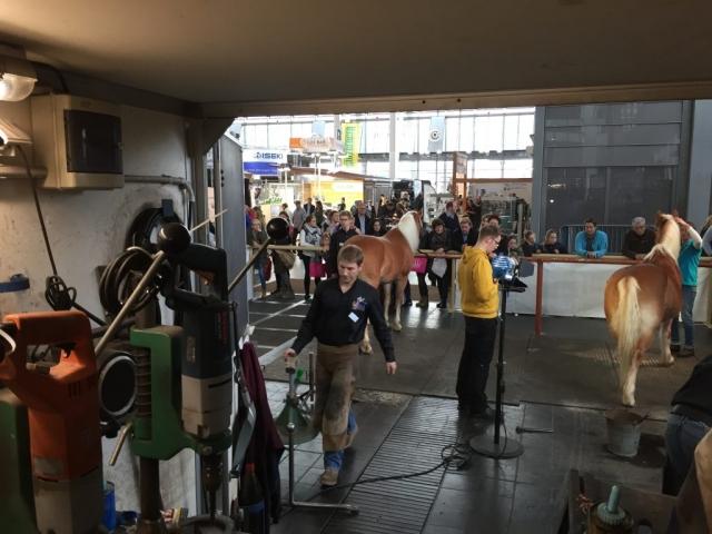 Das Nordhuf-Team auf der Pferd&Jagd 2016 in Hannover